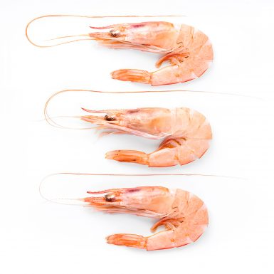 Fresh shrimps | Delicius