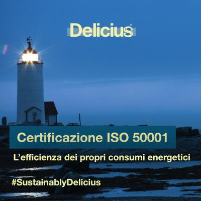 Certificazione ISO 50001: l'efficienza dei propri consumi energetici